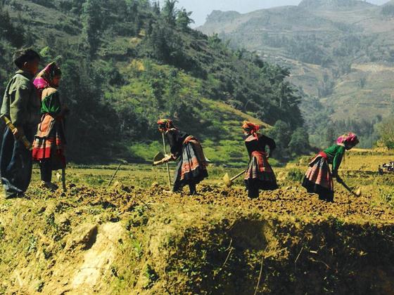 Mujeres hmong Bac Ha Vietnam